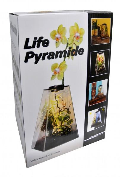 Lucky Reptile Life Pyramide