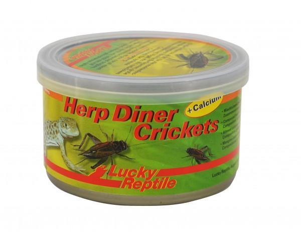 Herp Diner Crickets