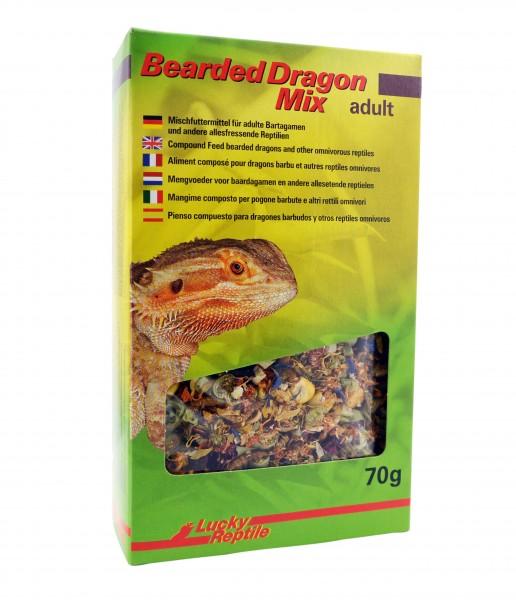 Bearded Dargon Mix