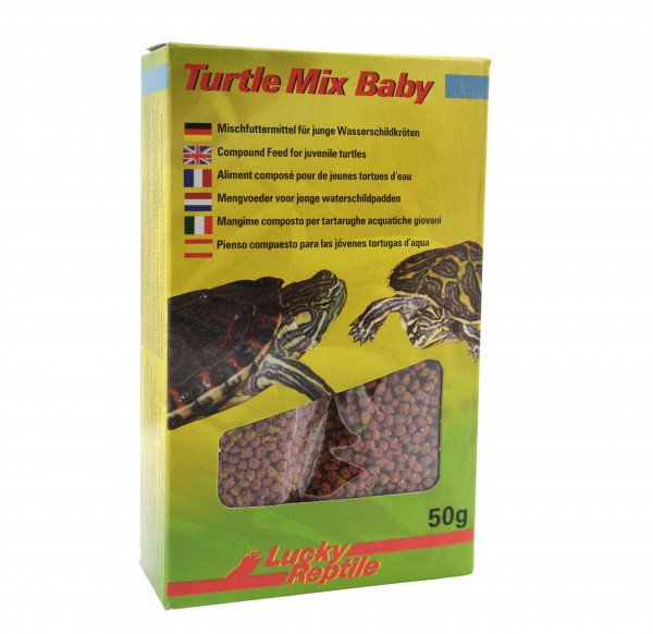Lucky Reptile Turtle Mix Baby