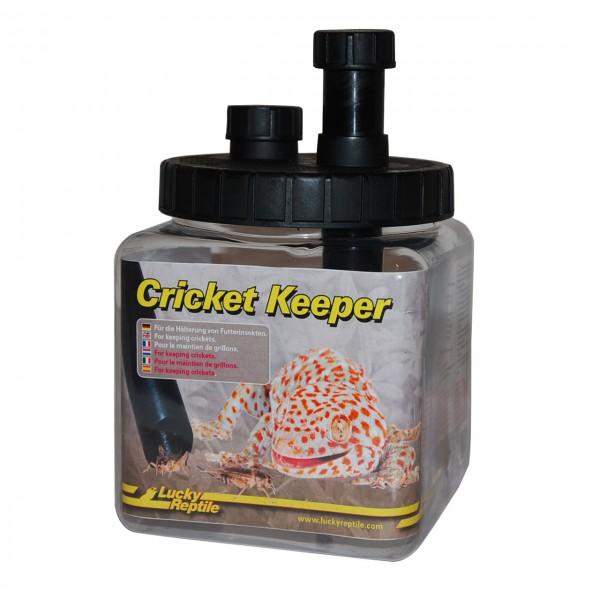 Cricket Keeper