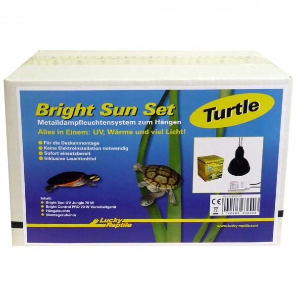 Lucky Reptile Bright Sun Set -Turtle-