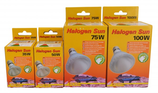 "Halogen Sun ""Spot Lamp"""
