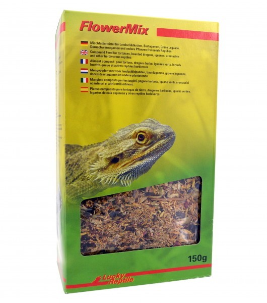 Lucky Reptile - Flower Mix